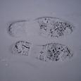 雪の日の足跡